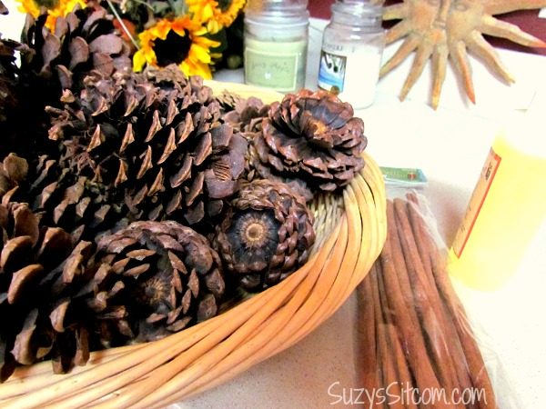 how-to-make-scented-pinecones