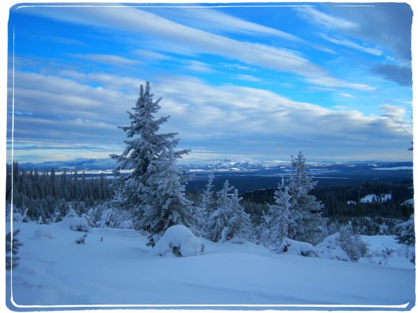 Montana winter/Suzys Artsy Craftsy Sitcom #photography