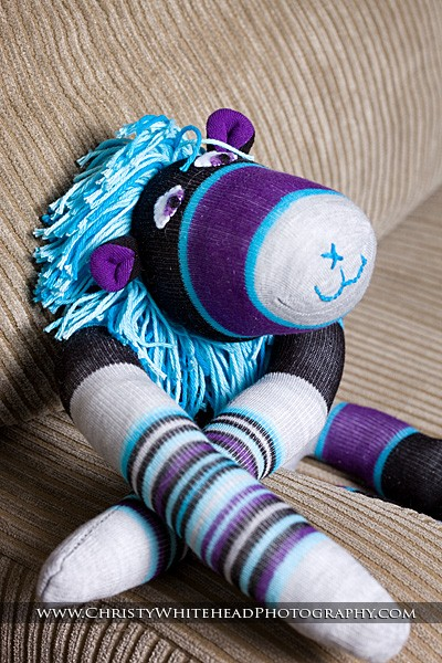 Purple Grey and Aqua Sock Lion by Christie Whitehead