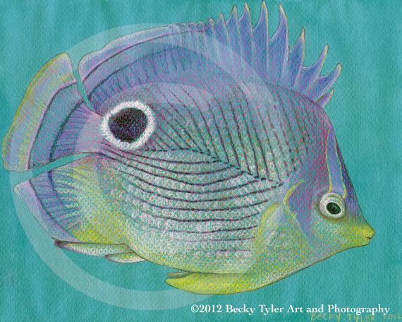 Purple Butterfly Fish Art Print by Becky Tyler #etsy