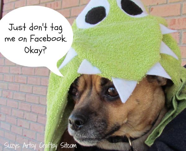 learn to sew dinosaur hooded towel