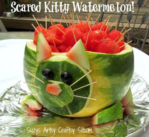scared kitty watermelon