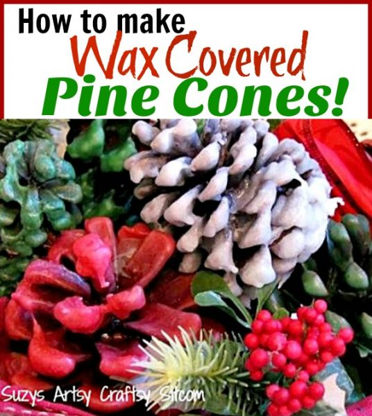 How to make wax covered pine cones. Great gift idea and beautiful decor