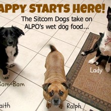 sitcom dogs take on alpo wet dog food