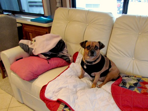 ralph in the rv