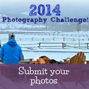 Suzy's Photography Challenge