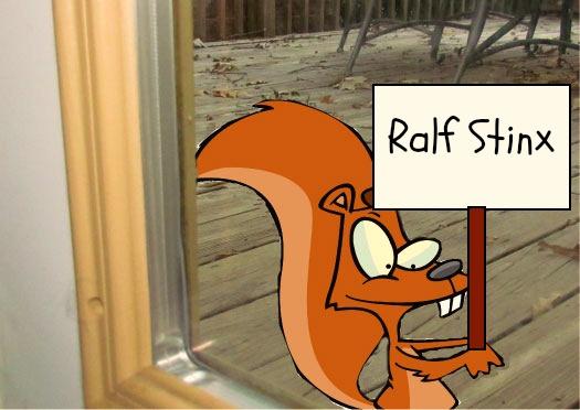 ralph squirrel