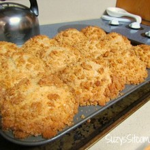 applesauce muffins with crumb topping